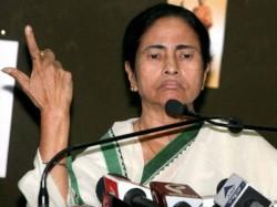 Swine Flu Caused Mosquito Bite Says Mamata Banerjee