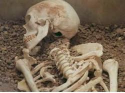Akansha Murder Case Skull Bones Skeleton Found From Udayan S Raipur House Garden