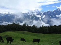 Best Hill Stations North India Travel This Summer