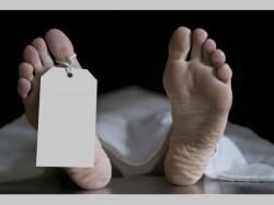Grandson Murdered His Grandmother Embezzlement The Money