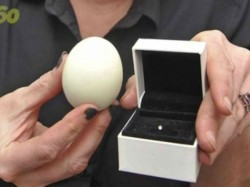 Woman Says She Found Diamond A Hard Boiled Egg