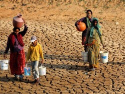 Southern India Reels Under Drought Tamil Nadu Worst Hit