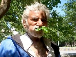 Pakistan S Mehmood Butt Eat Only Wood Leaves Survives Last 25 Years