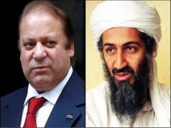 Pakistan S Tehereek E Insaaf Sue Nawaz Sharif Taking Funds Form Osama Bin Ladin