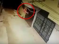Hyderabad 2 Year Old Falls Off Balcony