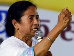 Mamata Banerjee Call Winning Gta Election After Mirik Municipality