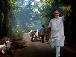 Connecting Rural India What Are The Steps That Modi Govts Taken Over The Years
