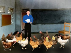 Students On Vacation Headmaster Turns Classrooms Into Poulty Farm