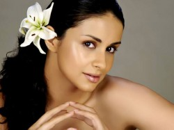 From Model Actress Politician Know More About Gul Panag Bollywood
