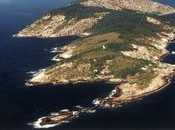 Ilha Da Queimada Grande Snake Island Brazil