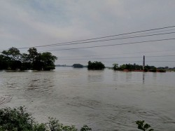 Flood Situation Malda Dinajpur Is Worsted Many Fierce Rivers