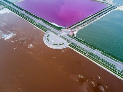 Chinas Yuncheng Lake Turns Extraordinary Pink Green