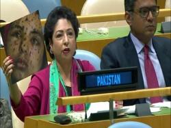 Pakistan Envoy Maleeha Lodhi Takes Up Wrong Photograph Corner India