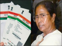 Tmc Files Case At Supreme Court Challenge Aadhar Link Against Central