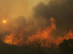 Wild Fire Wreks Havoc California Death Toll Reaches