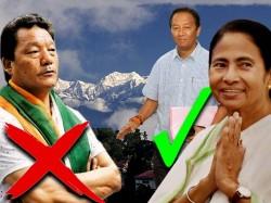 Binoy Tamang Snatches The Hill Municipality Board From Bimal Gurung