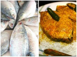 Hilsa Gets Cheapest Various Parts West Bengal October This Year