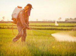 Deadly Pesticides Who Or Other Countries Has Banned Used India Farming
