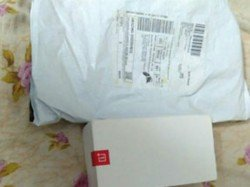 Snake Found Toys Packet Ordered Online China