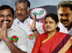 Unified Aiadmk Gets Two Leaves Symbol Says Tamil Nadu Cm E Palaniswami