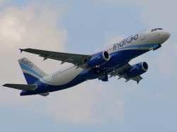 Chennai Doha Indigo Flight Suffers Bird Hit