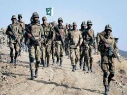 Pakistan Using Hawks Spying Over India