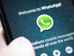 Whatsapp Is Making New App Ipad Users