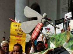 Oppositions West Bengal Assembly Demands Discuss On Dengi