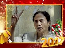 Trinamool Congress Wins Hill After Three Decades Mamata Magic