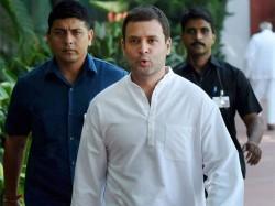 Rahul Gandhi Filing Nomination Congress President On Monday