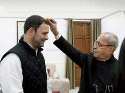 Rahul Gandhi Takes Pranab Mukherjee S Blessing Then Submits Nomination