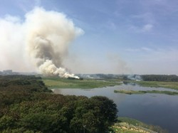 Bellandur Lake Fire 5 000 Army Soldiers Fighting Fire This Highly Polluted Lake Bengaluru