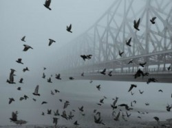 Foggy Weather Will Continue More Than Two Days Bengal