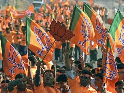 Bjp Is Preparing 13 State Elections With Loksabha Election