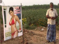 Farmer From Andhra Pradesh Puts Up Sunny Leone S Flex Save His Crop From Evil Eye