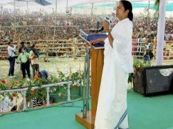 Mamata Banerrjee Seems That Tmc Is The Pioneer Our Country