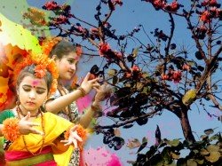 Kolkata Will Be Partly Cloudy Sunny During Holi In North Ben