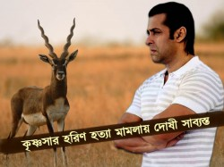 Blackbuck Poaching Case Salman Khan Has Been Convicted