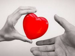 This Video Is Telling Every Thing On Heart Transplant Work