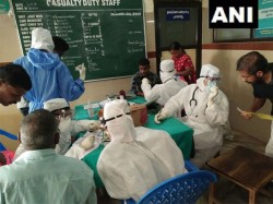Bihar Sikkim Governments Issues Public Advisory On Nipah Virus
