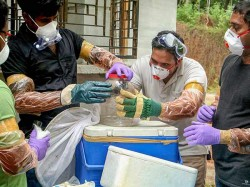 How Nipah Virus Spreading Can Be Prevented