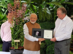 An Orchid Was Named As Narendra Modi His Singapur Tour