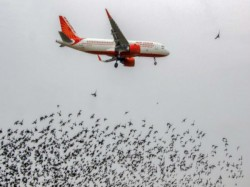 Emergency Landing Two Planes Kolkata Due Mechanical Error Mid Air