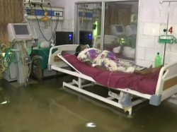 Fishes Swims Nalanda Medical College Hospital S Icu Bihar After Waterlogging