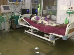 Fish Swimming Icu Poor Situation Bihar Hospital Captured Video