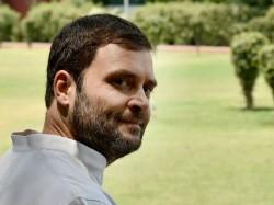 Rahul Gandhi Arranges Meeting With Muslim Intellectual Persons