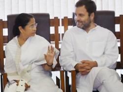 Rahul Gandhi Can Talk With Mamata Banerjee On Congress Broken
