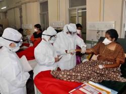More Than 207 Cases Swine Flu Were Reported Across Karnataka