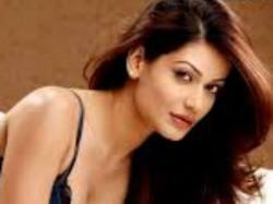 Payal Rohatgi Slams Dibakar Banerjee Asking Her Sleep With Him For Role