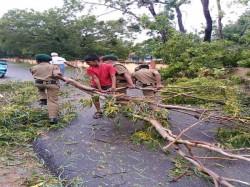 Wind Speed Increases Fourfold Bengaluru Due Cyclone Gaja